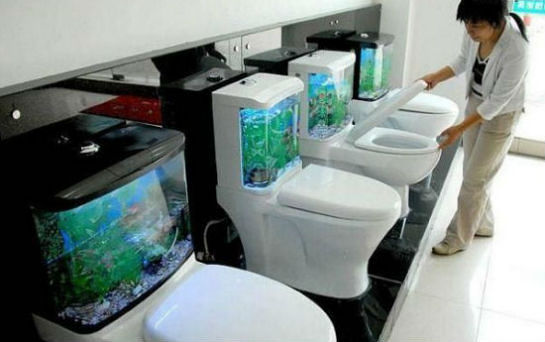 funny-toilet
