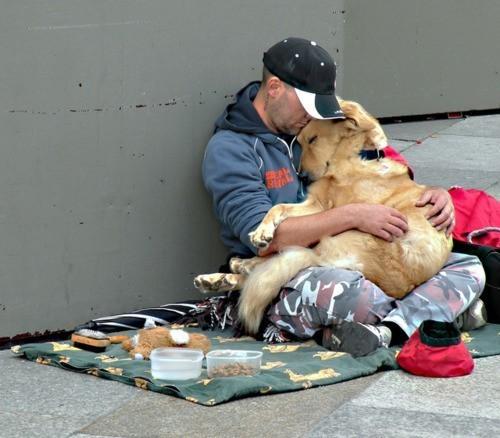Човек и куче